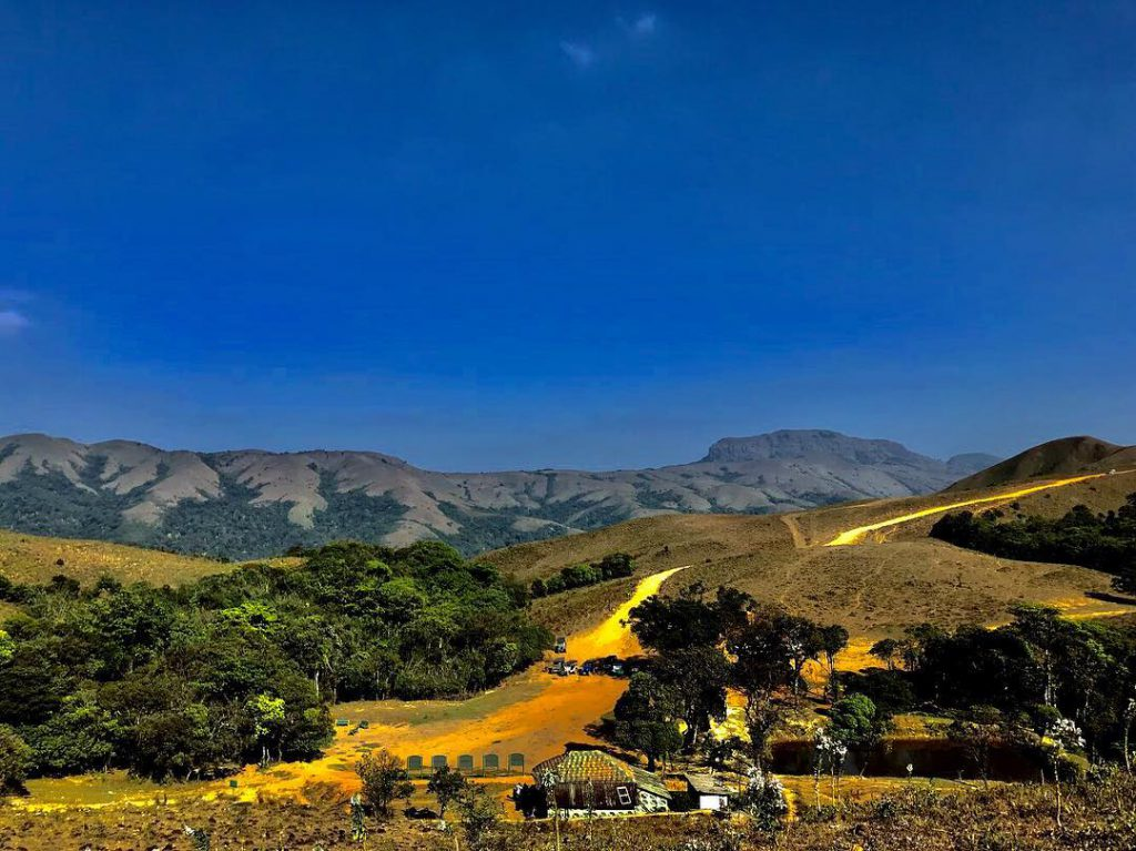 Coorg – Walk Amidst The Coffee Plantations
