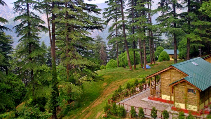 Dhanaulti – Explore The Most Beautiful Alpine Forests