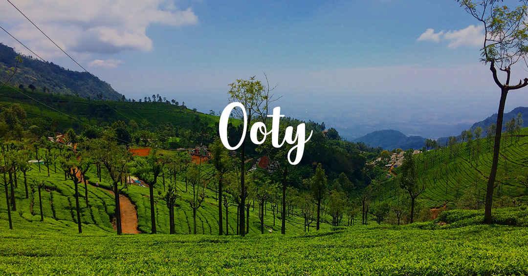 Visit In Ooty