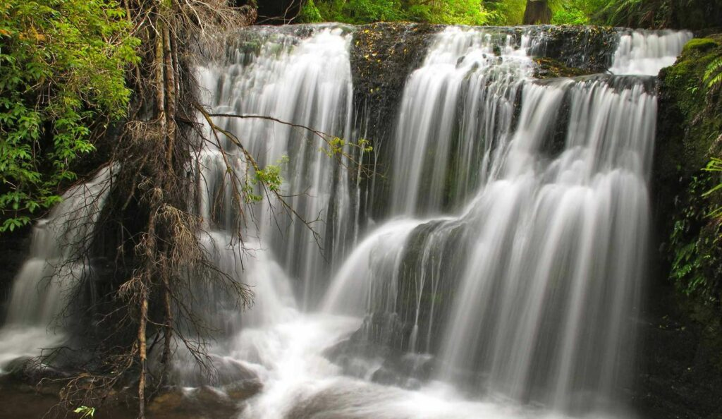 Kaitiki Waterfalls