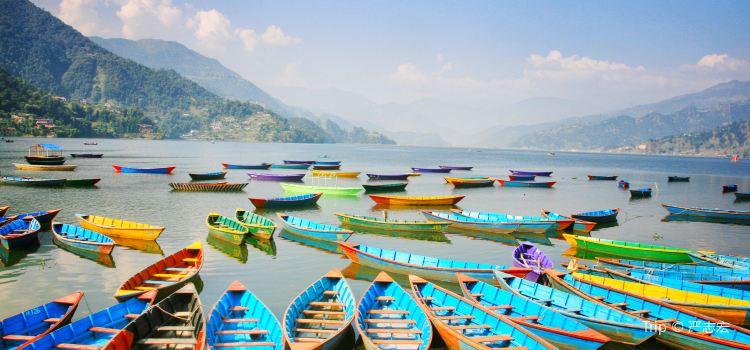 Phewa Lake – Scenic Surroundings