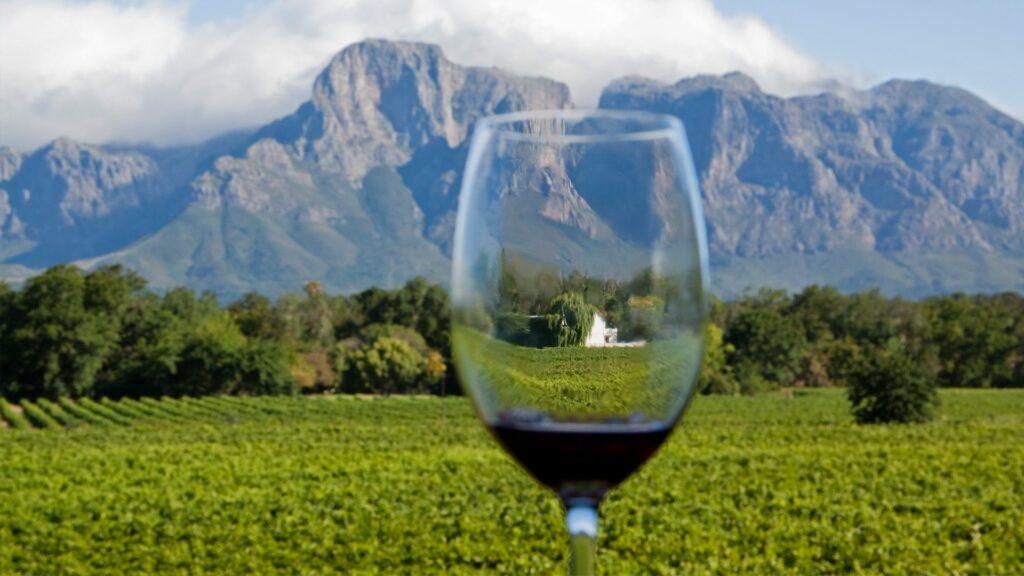 Cape Winelands-South Africa