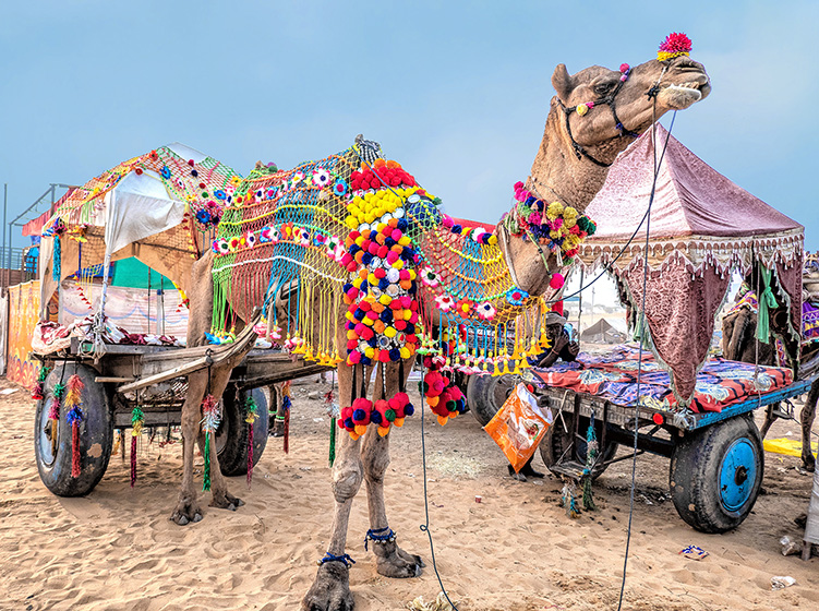 Kutch, Gujarat: The Westernmost State Of India