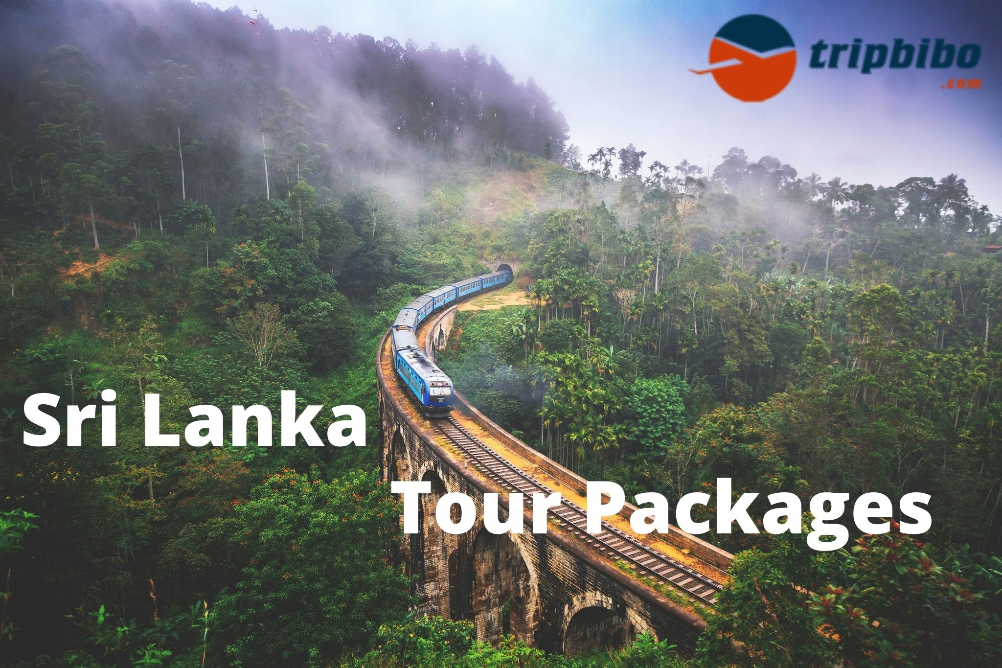 Book Top 50 Sri Lanka Tour Packages - Tripbibo