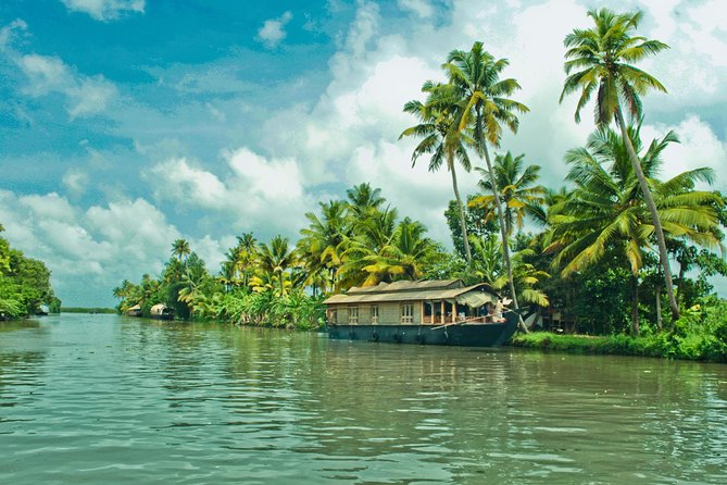 Top 14 Tourist Places To Visit In Cochin