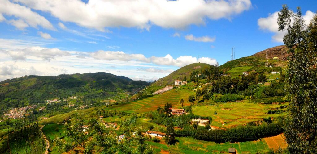 Best Time To Visit Ooty For Honeymooners
