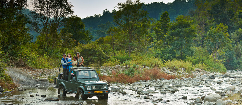 Best Time To Plan Your Coorg Trip