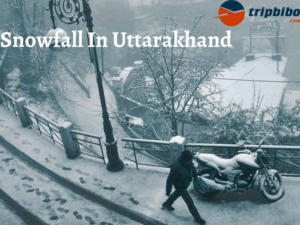 Snowfall In Uttarakhand