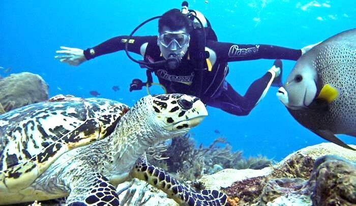 Netrani Island In Karnataka - Observe Rich Marine Life