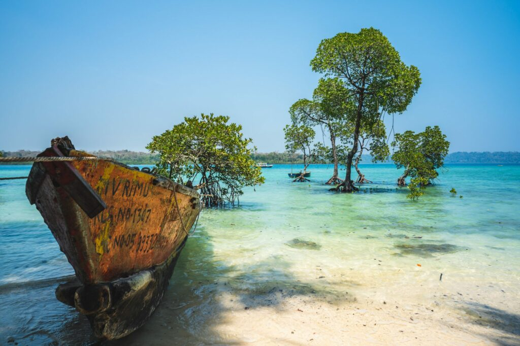 Neil Island - Take a dip and observe the coral beauty